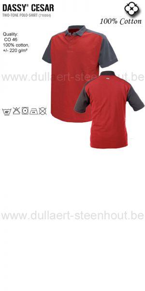 Cesar (710004) Polo bicolore rouge/gris